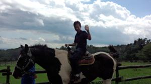 馬車を引いていたお馬さんだったので、横幅が広かった